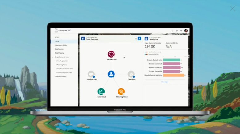 Salesforce Customer 360 interface